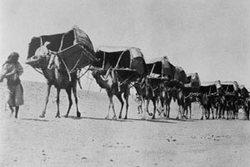 هجرة الرسول من مكة الى المدينة KmL00348